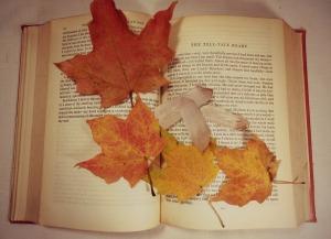 autumn-1041448_1280